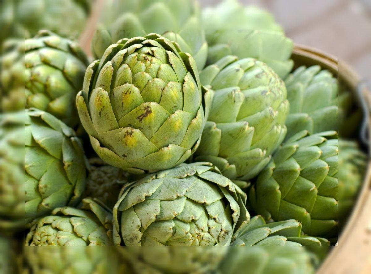 alcachofa remedio planta medicinal